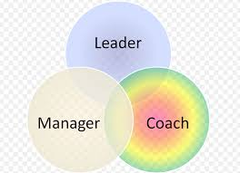 Managers as Coaches (Part 2). Some Solutions!